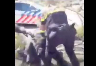 josipovic den bosch politie